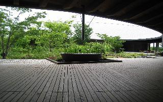 20080531-20080524-7.JPG